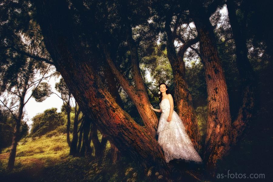 Сказочные свадебные фотографии